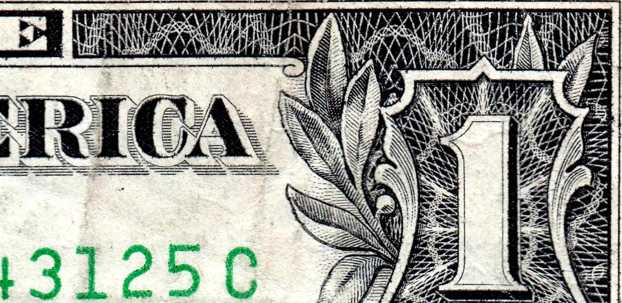 dolar buho