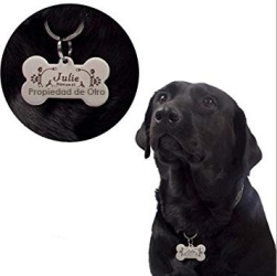 perro collar medalla propiedad