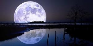 El discipulo amado solsticio