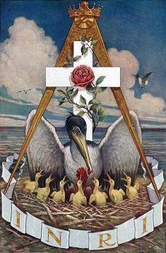 pelicano simbolo_rosacruz