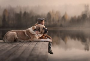don bosco y perro angel