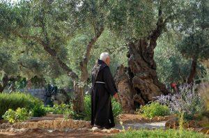 monte de los olivos huerto fraile