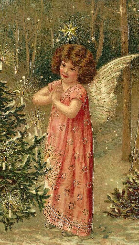 angel navidad cccc