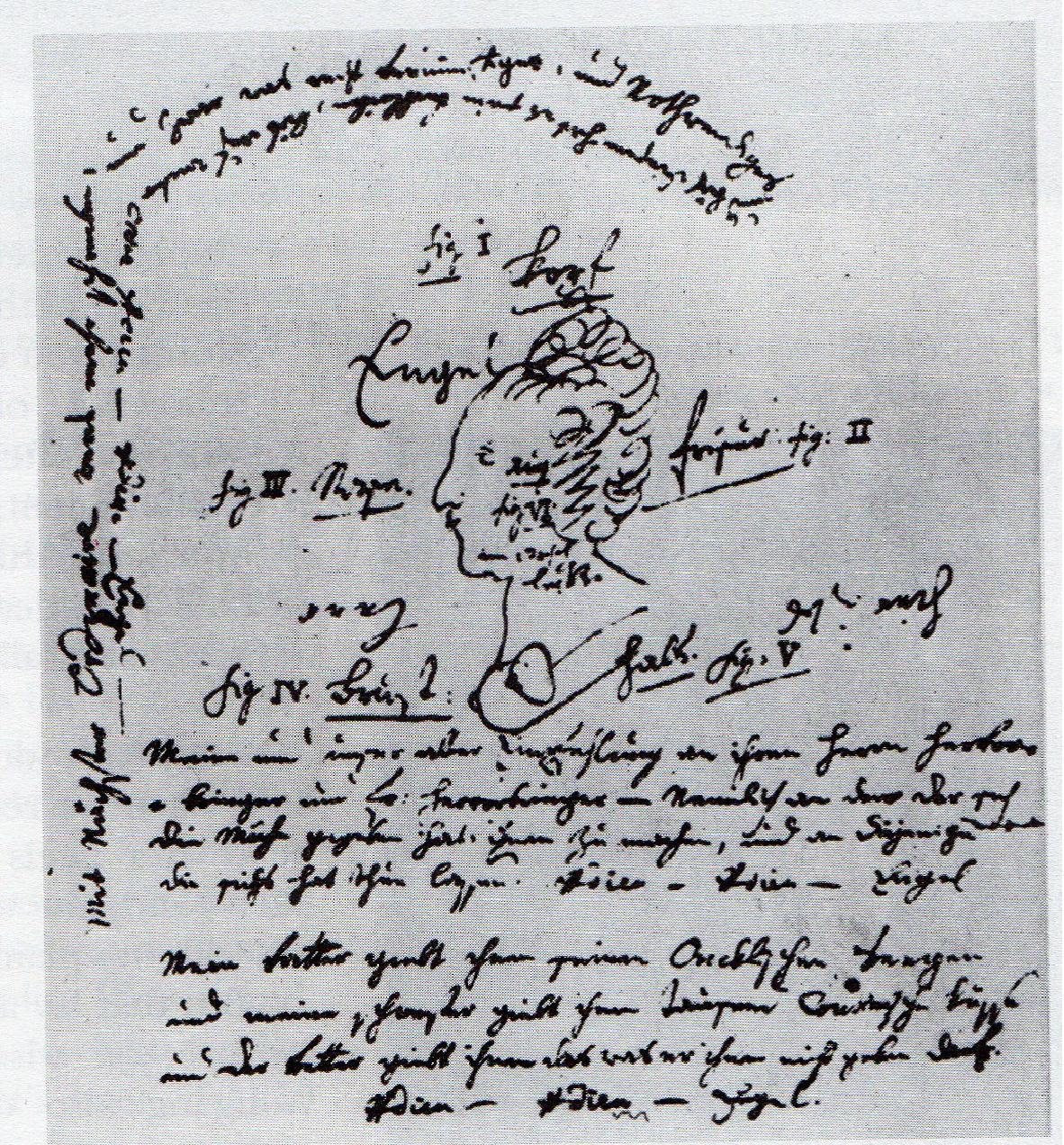 mozart manuscrito