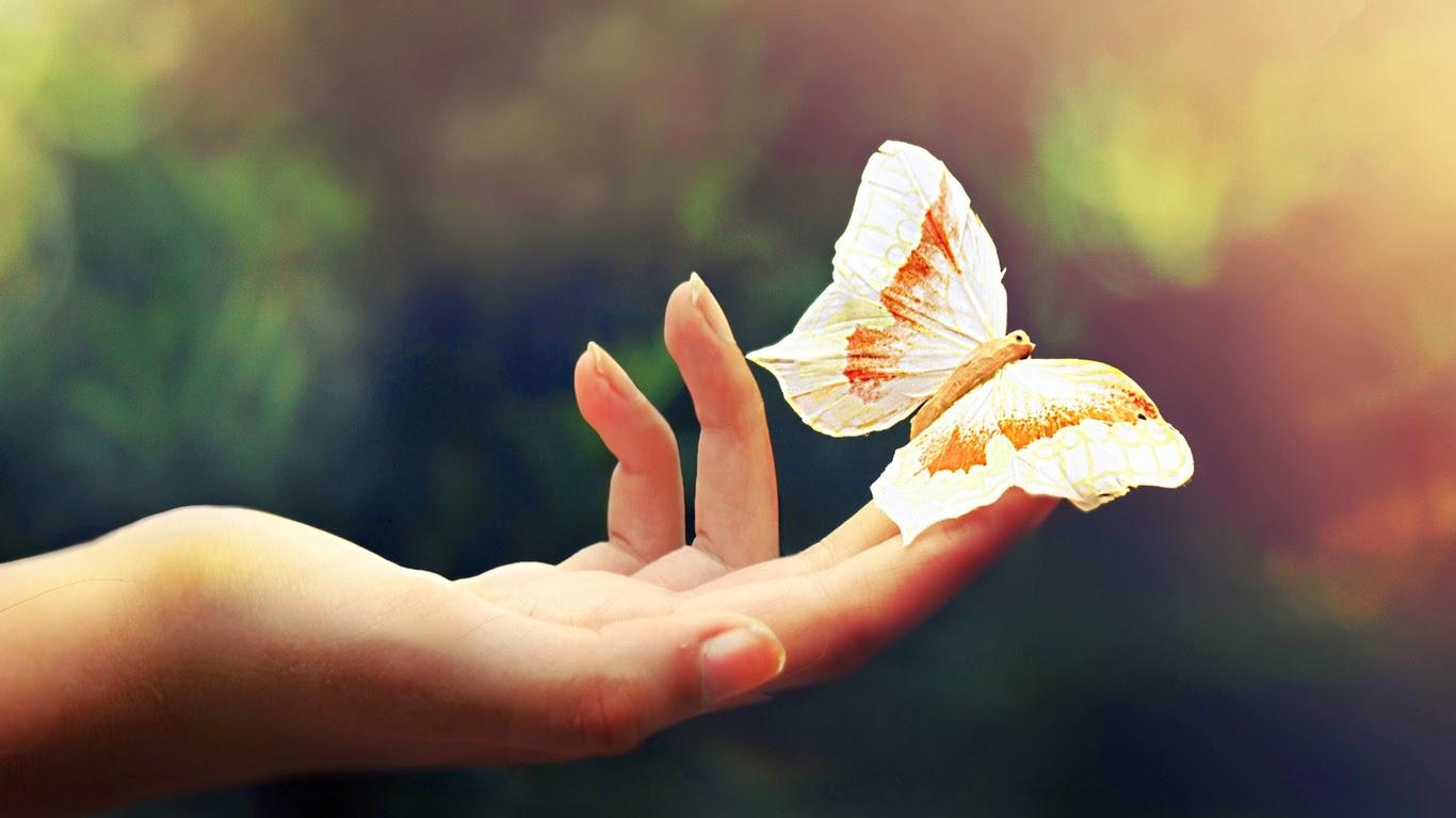 azul-pastel-fondos-de-pantalla-brazos-manos-dedos-mariposas-luz-color-295882