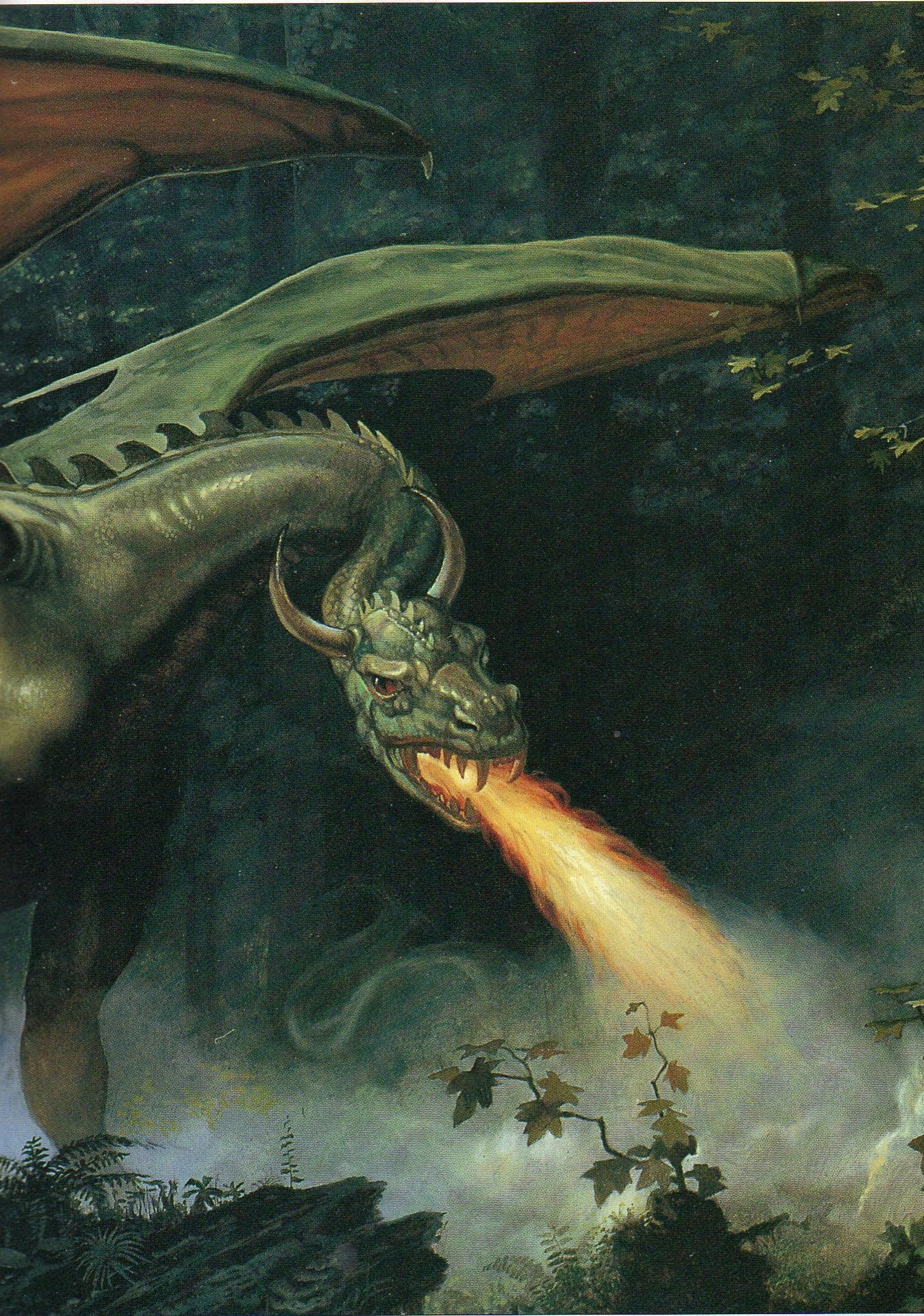 dragon int